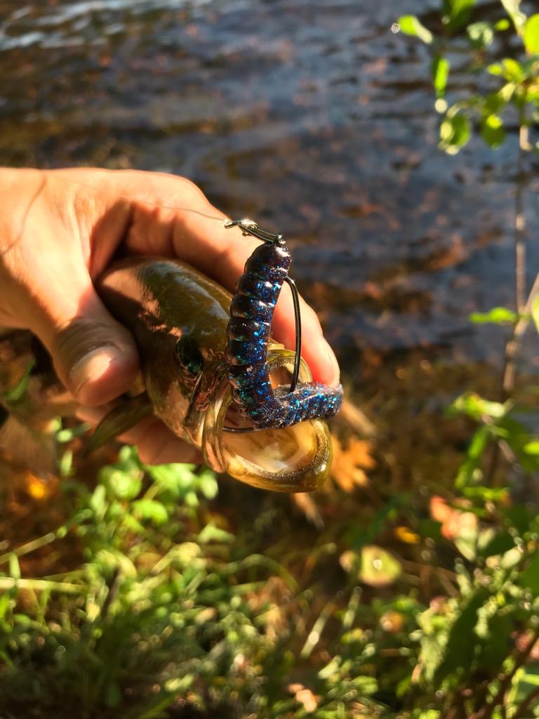 """Bass fishing in USA ตอน ถล่มวังลูกปลา - -"""""""