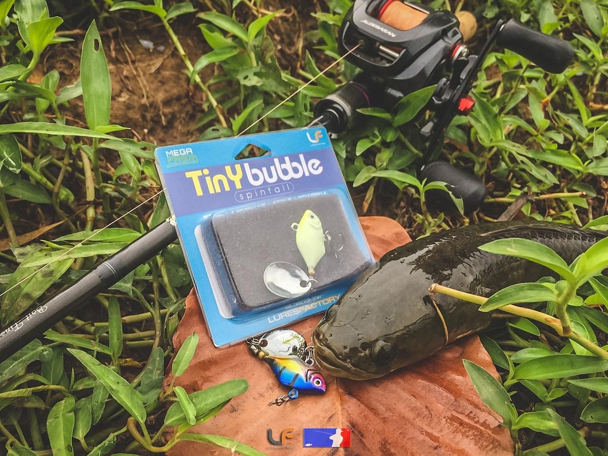 TinY Bubble Spintail เด็กใหม่ในค่าย LFLURESFACTORY
