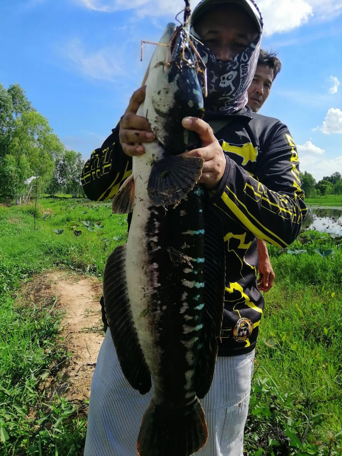 นานๆได้ตกปลา