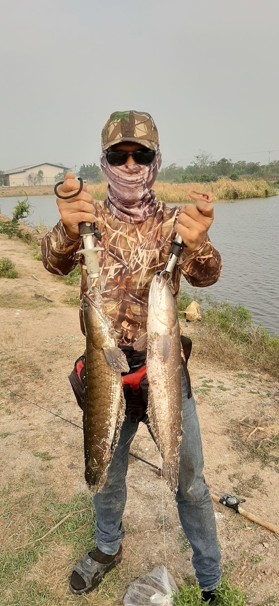 ทริปปลาช่อนวันหยุด กับ SnakeHead Angler Club