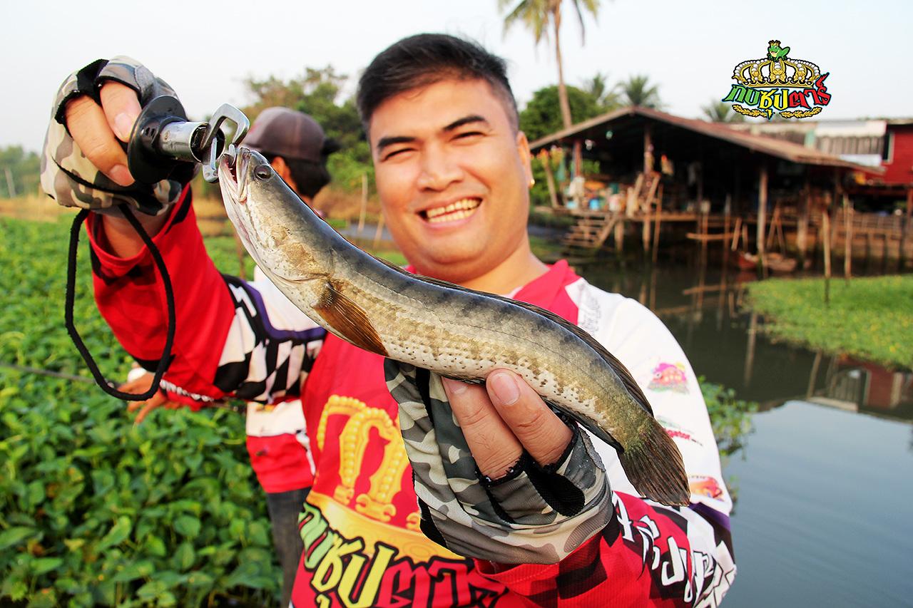 #เหยื่อที่จะเข้ามาเติมเต็มในการตกปลาที่สมบรูณ์แบบของคุณ แม่น้ำ