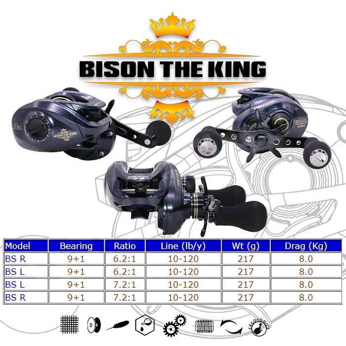 Bison the king