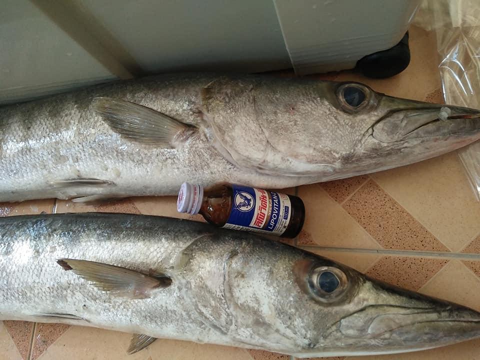 แกงส้มปลาสาก(Barracuda:น้ำดอกไม้)