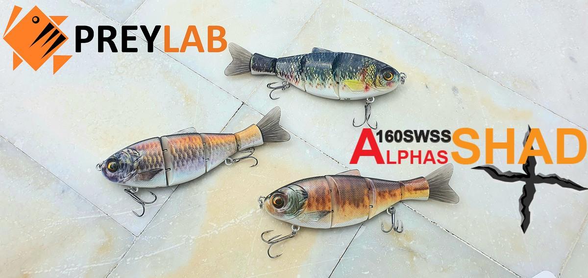 บิ๊กเบท ปลาบั้ง Alphas Shad  รุ่นใหม่จาก PREYLAB เหยื่อคอสตอม