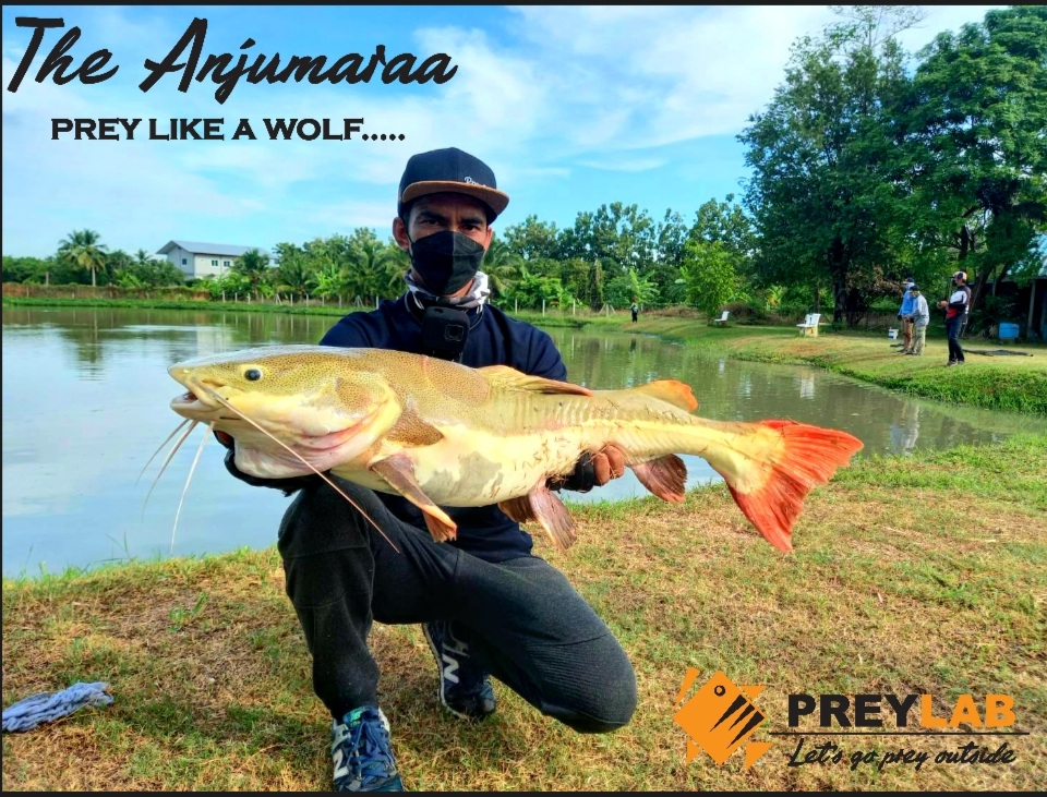 The Anjumaraa คัน Hi-End รุ่นแรกจาก PREYLAB